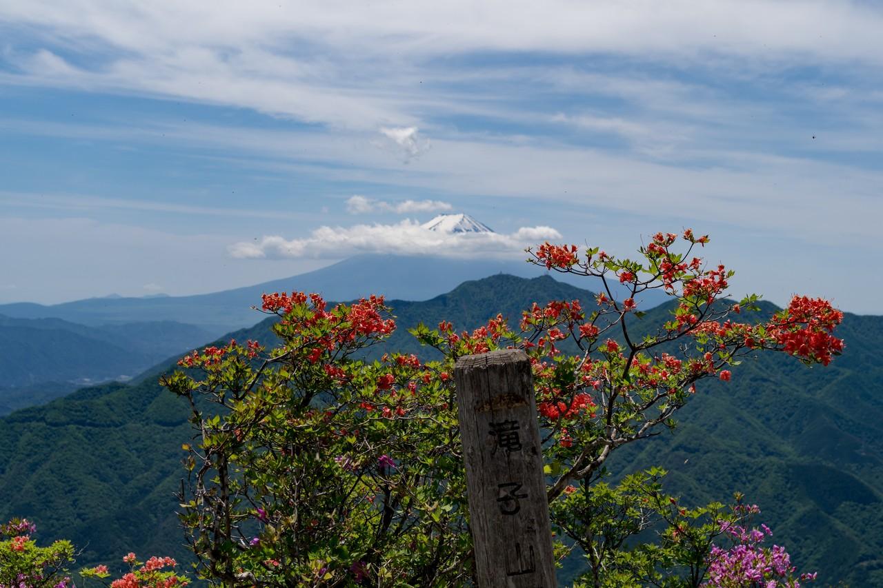 170603滝子山_052