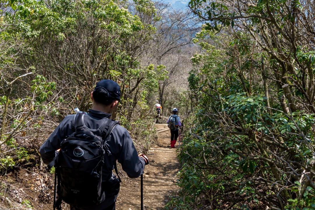 鍋割山からの下山道