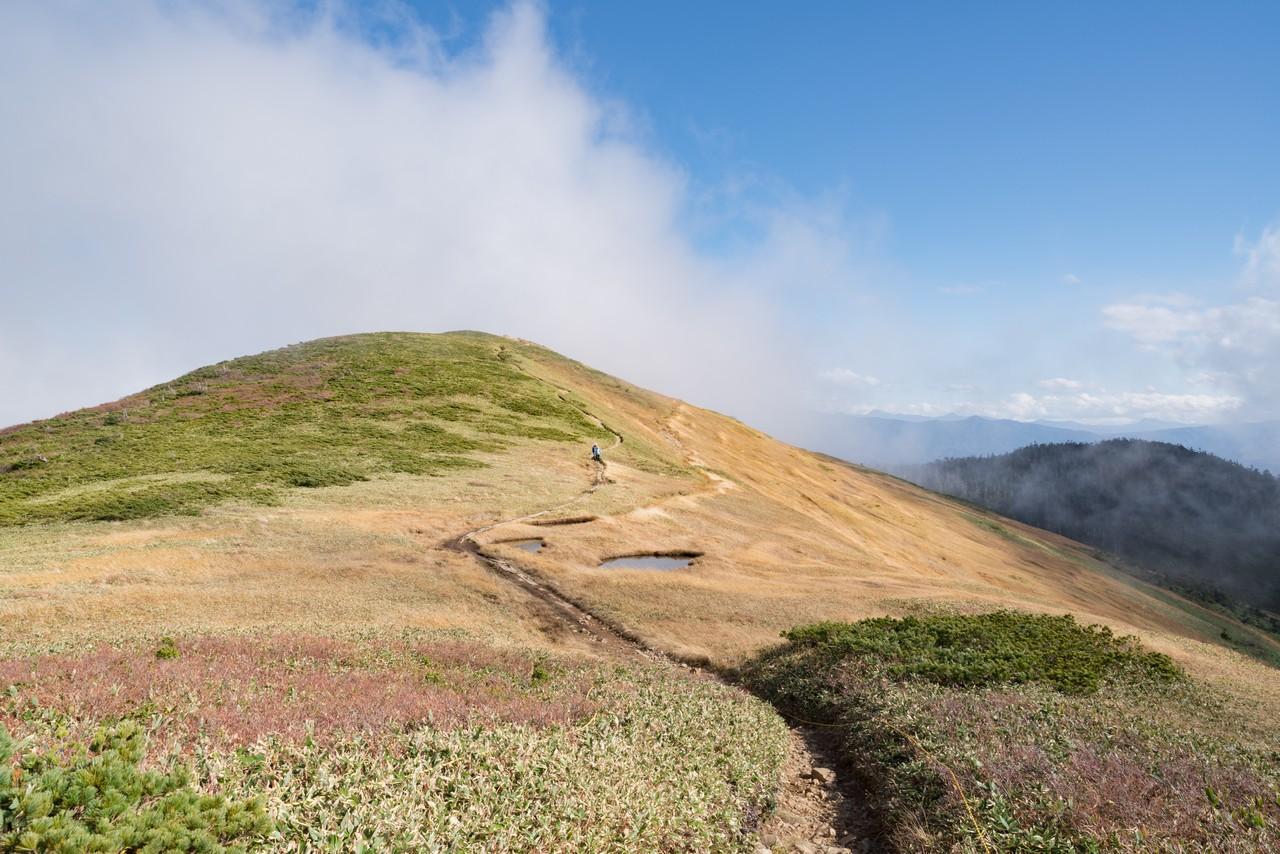 巻機山の山頂