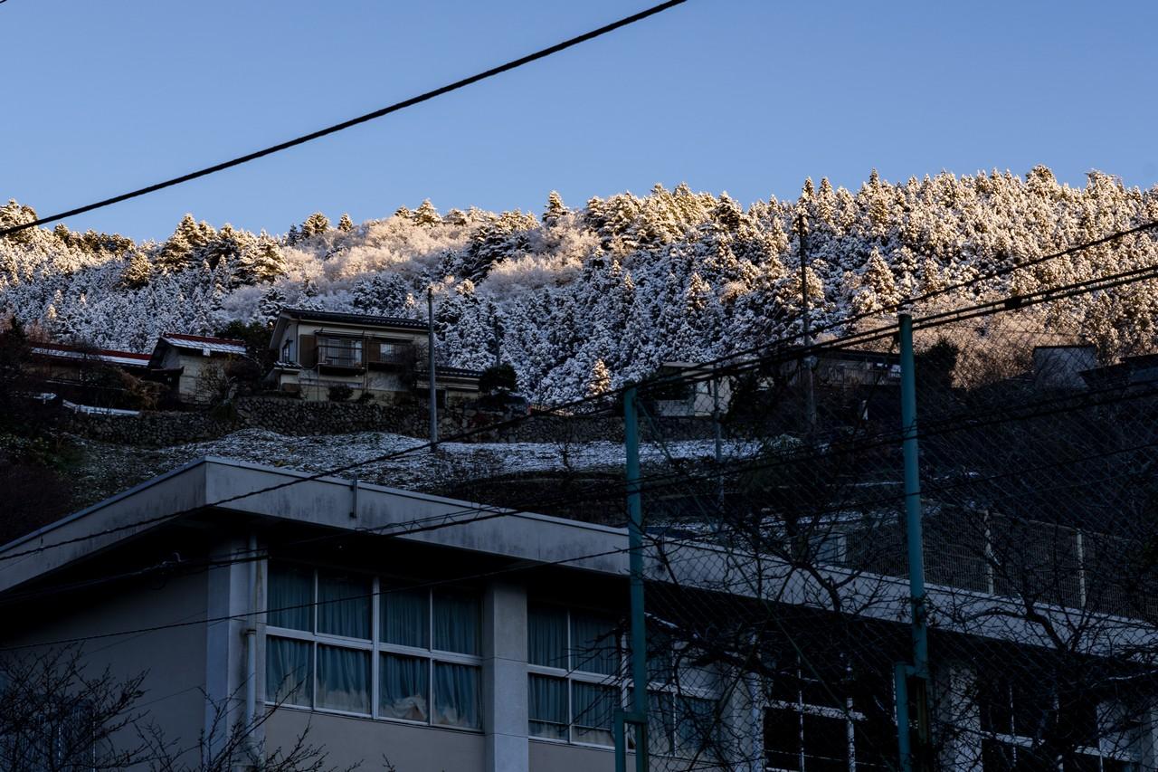 200119大岳山_010