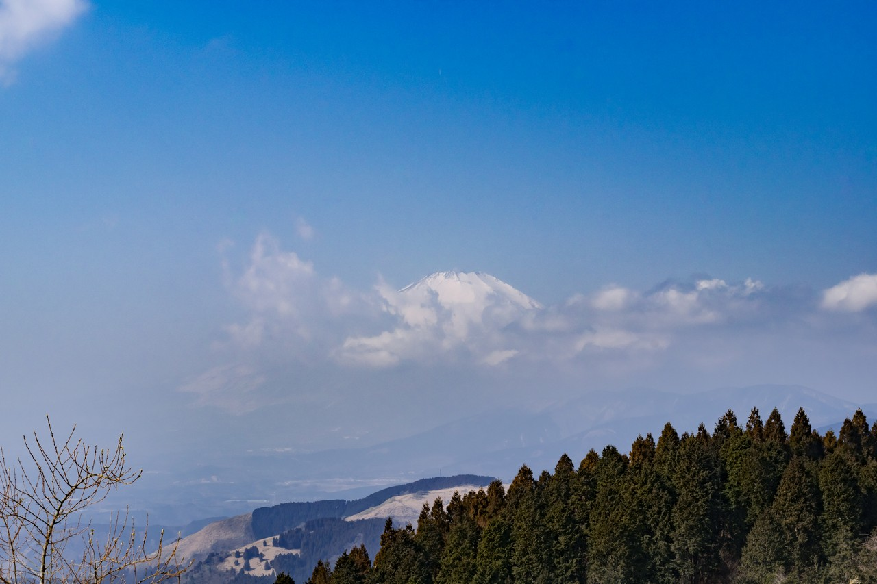 高松山の山頂から見た富士山