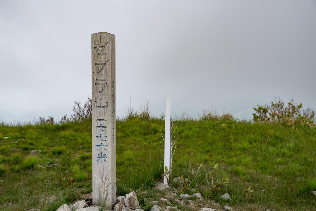 190622霧ヶ峰_060