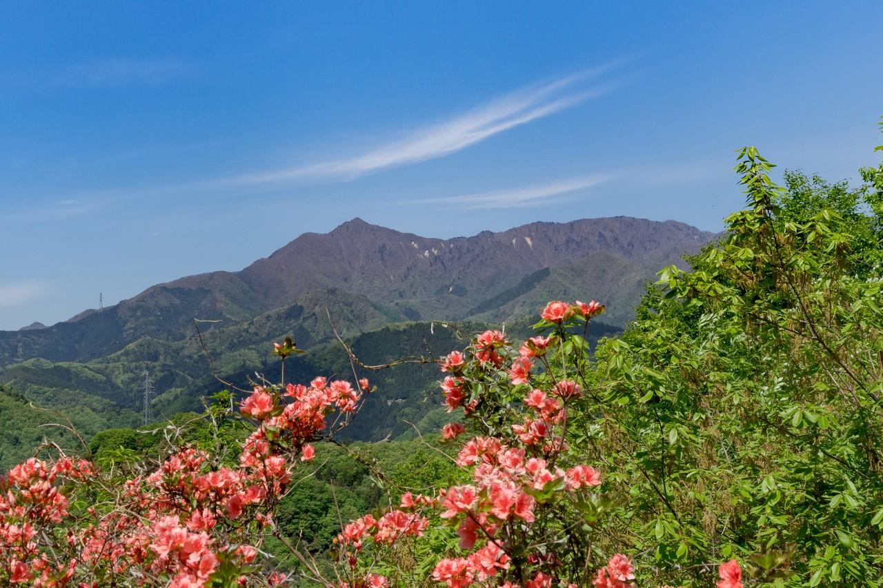 岩殿山から見た滝子山