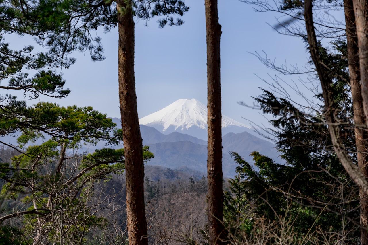 200321九鬼山_057