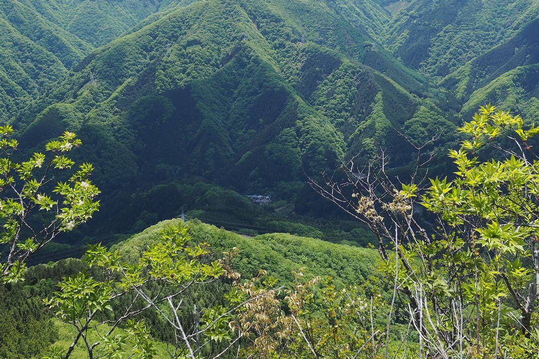 二子山 東岳から見た坂本