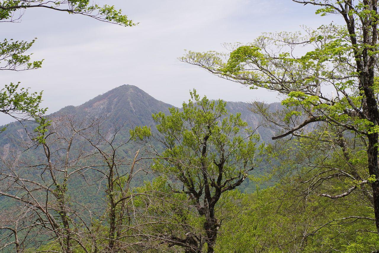 犬越路コースから見た蛭ヶ岳