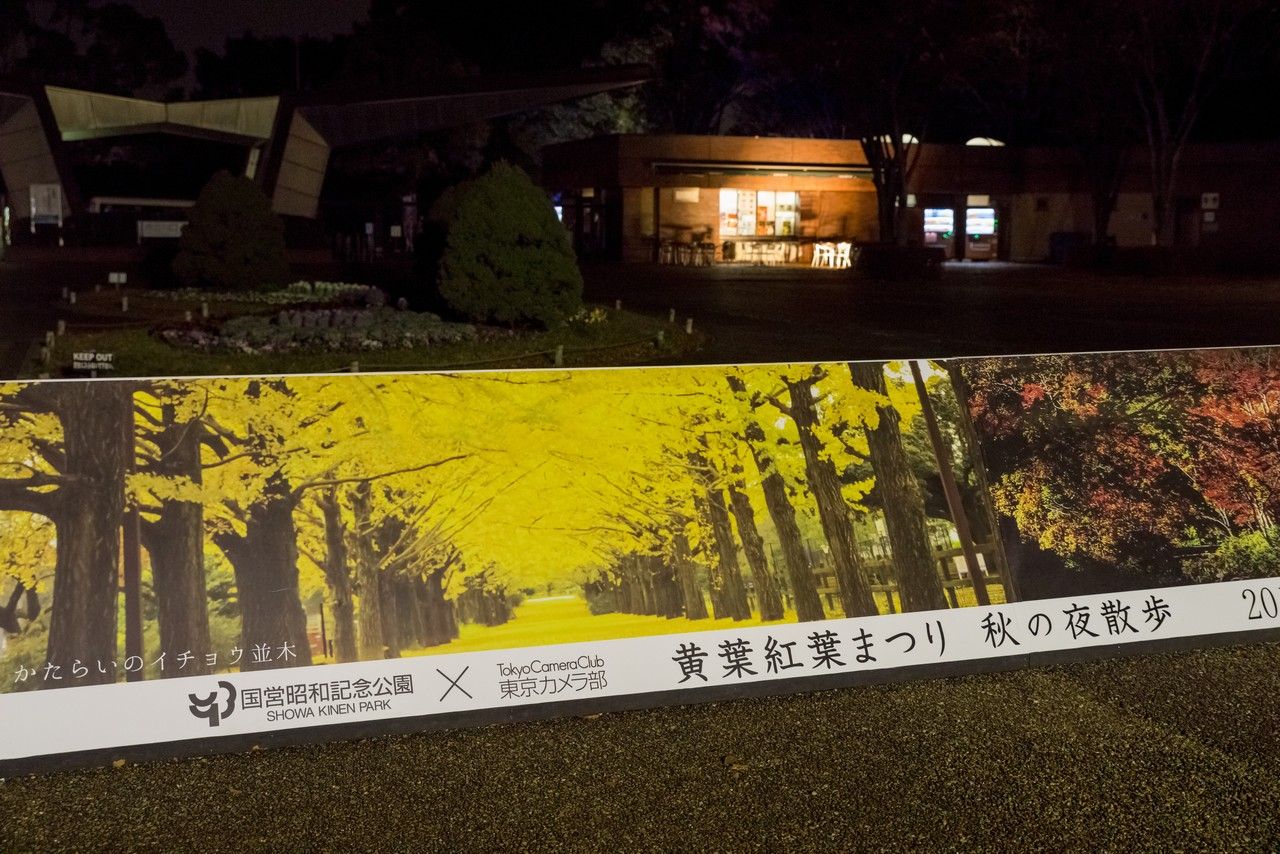 191124昭和記念公園_002