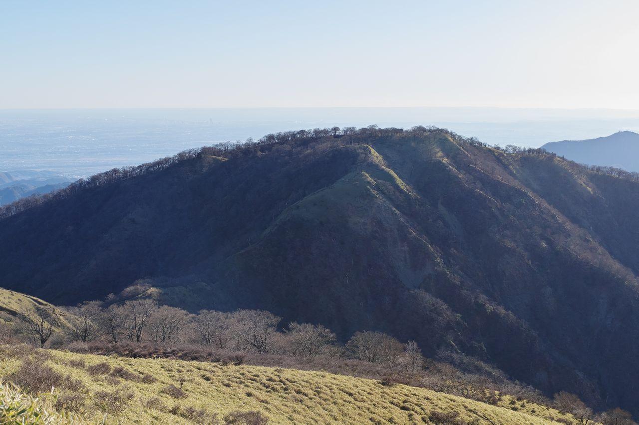 不動ノ峰から見た丹沢山
