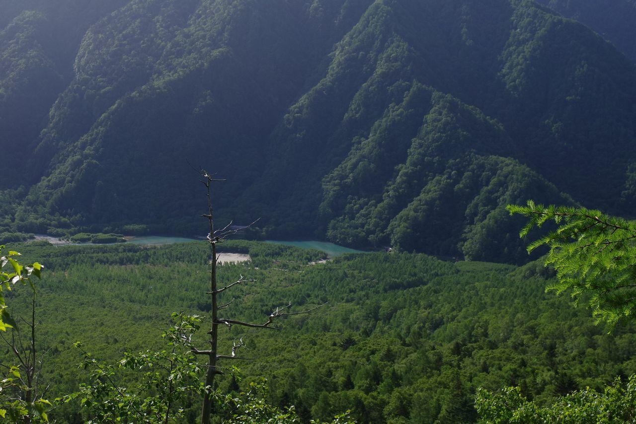 焼岳 上高地コースから見た大正池