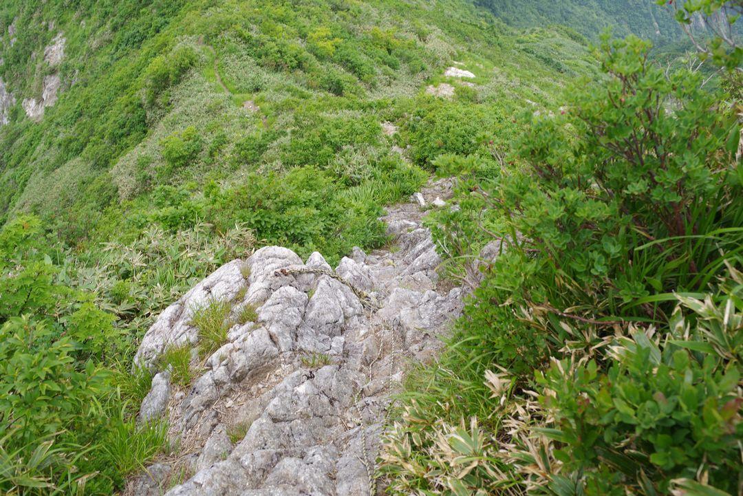 大源太山と七ツ小屋山との鞍部