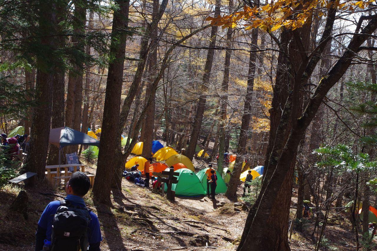 富士見平小屋のキャンプ指定地