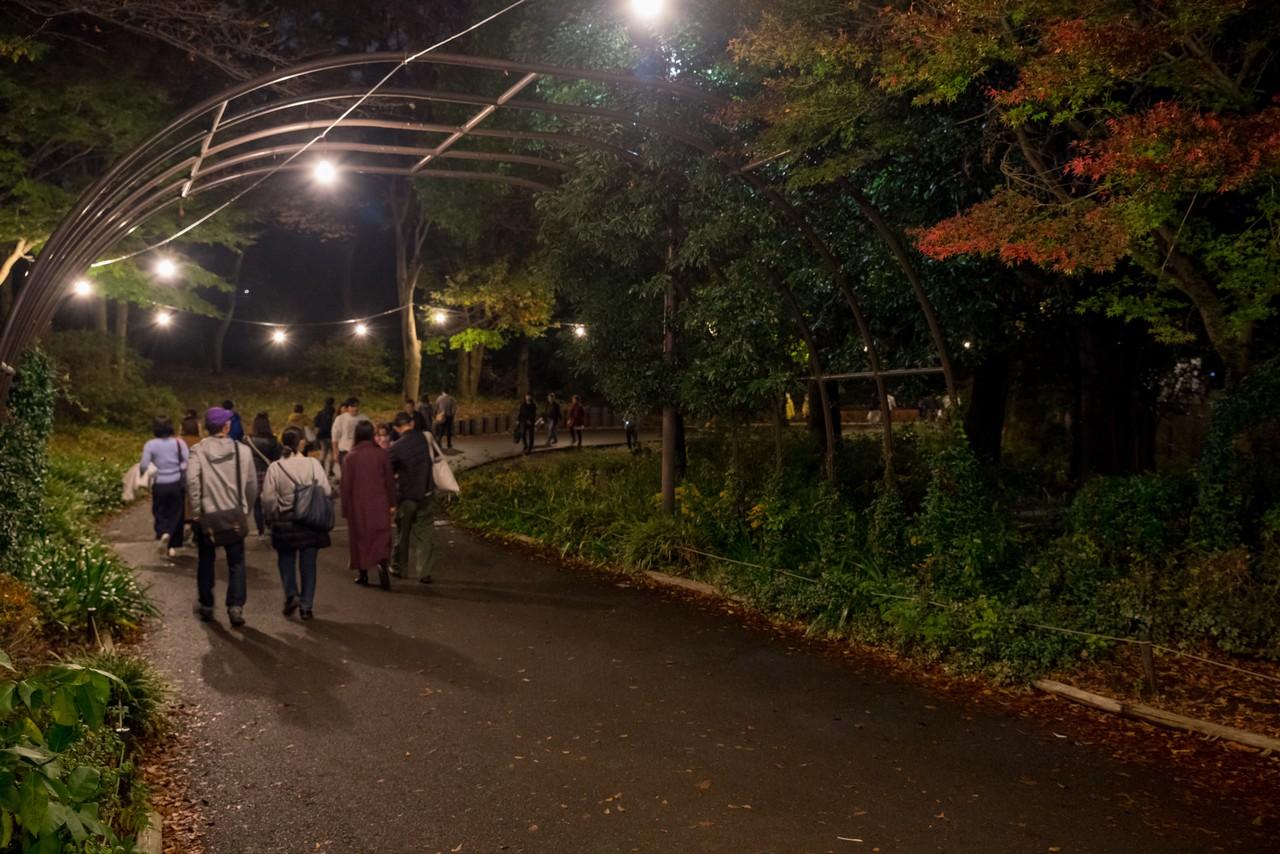 191124昭和記念公園_008