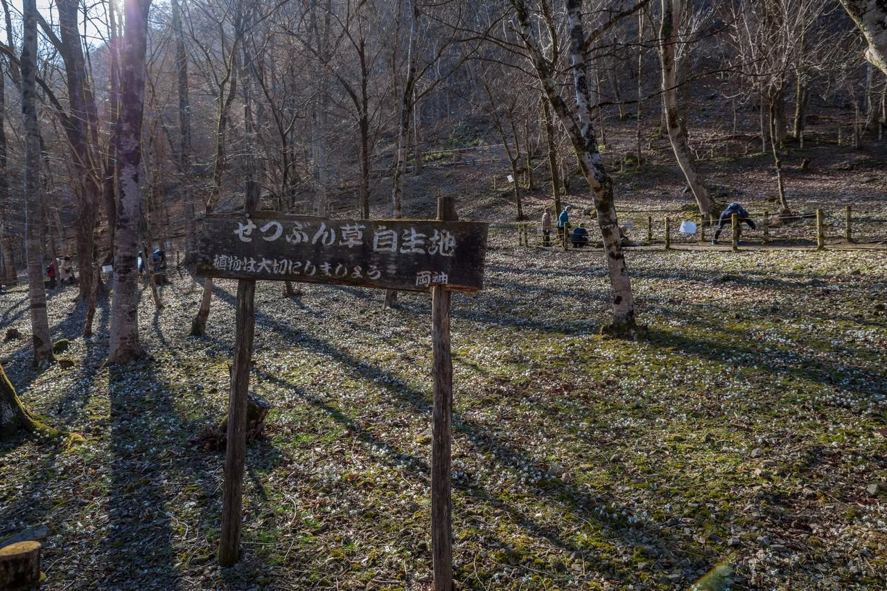 200224四阿屋山_002