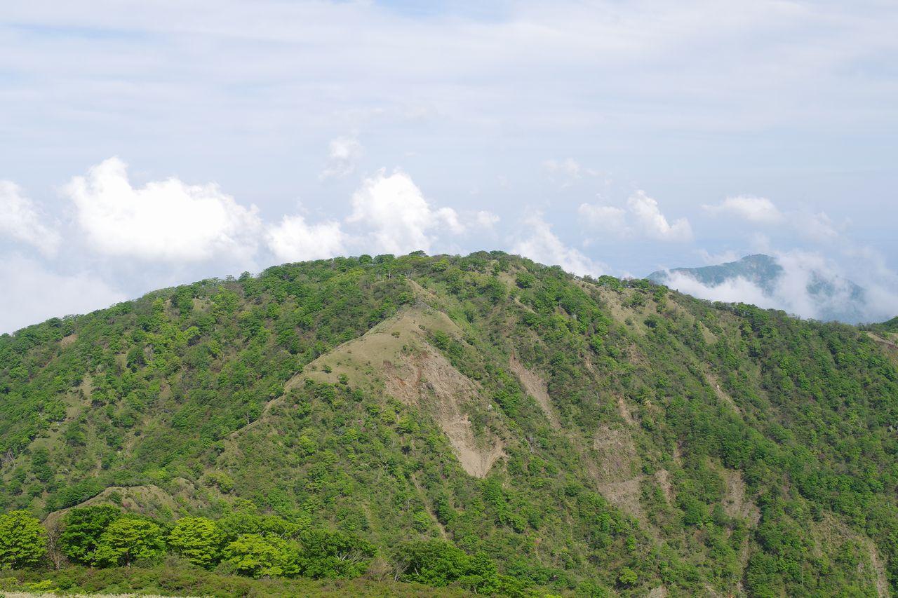 不動の峰から見た丹沢山