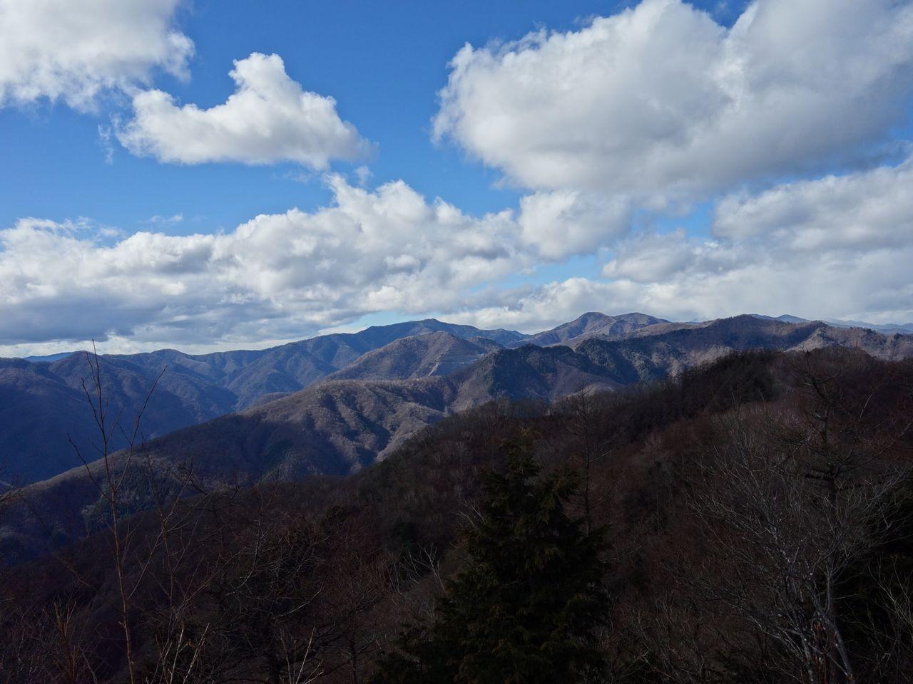 天目山から見た雲取山