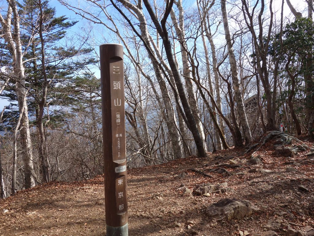 三頭山 東峰の山頂標識
