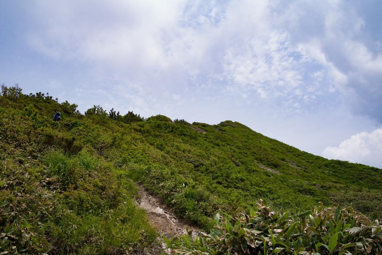 大源太山 山頂手間のニセピーク