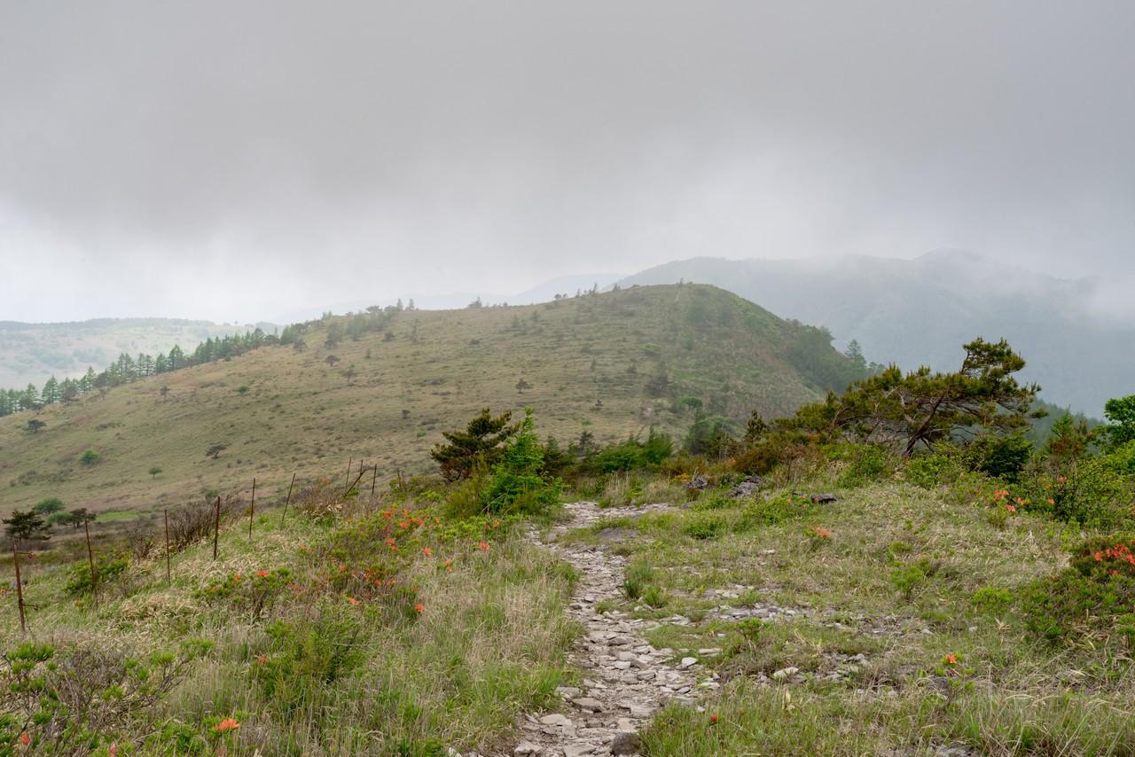 190622霧ヶ峰_057