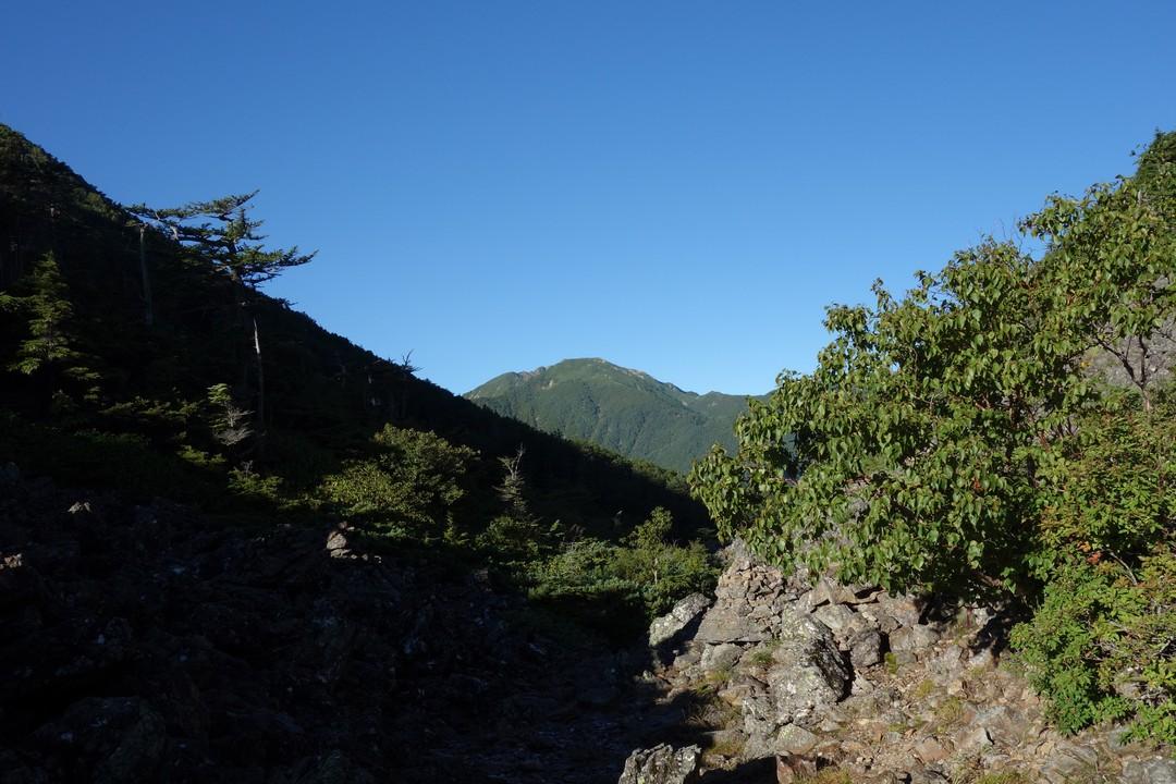仙水峠から見た仙丈ケ岳