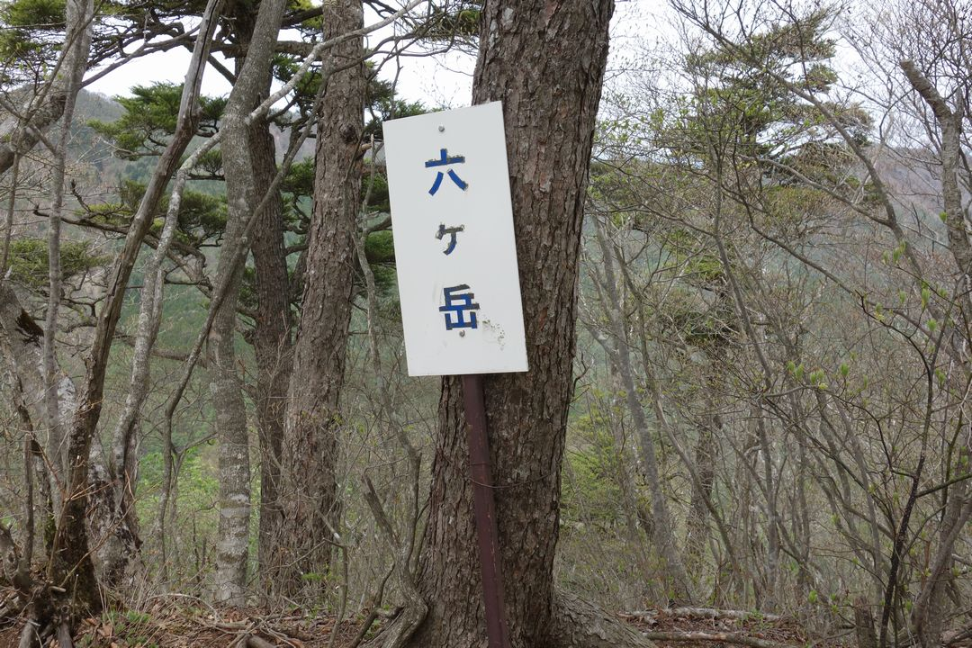 160503十二ヶ岳_026