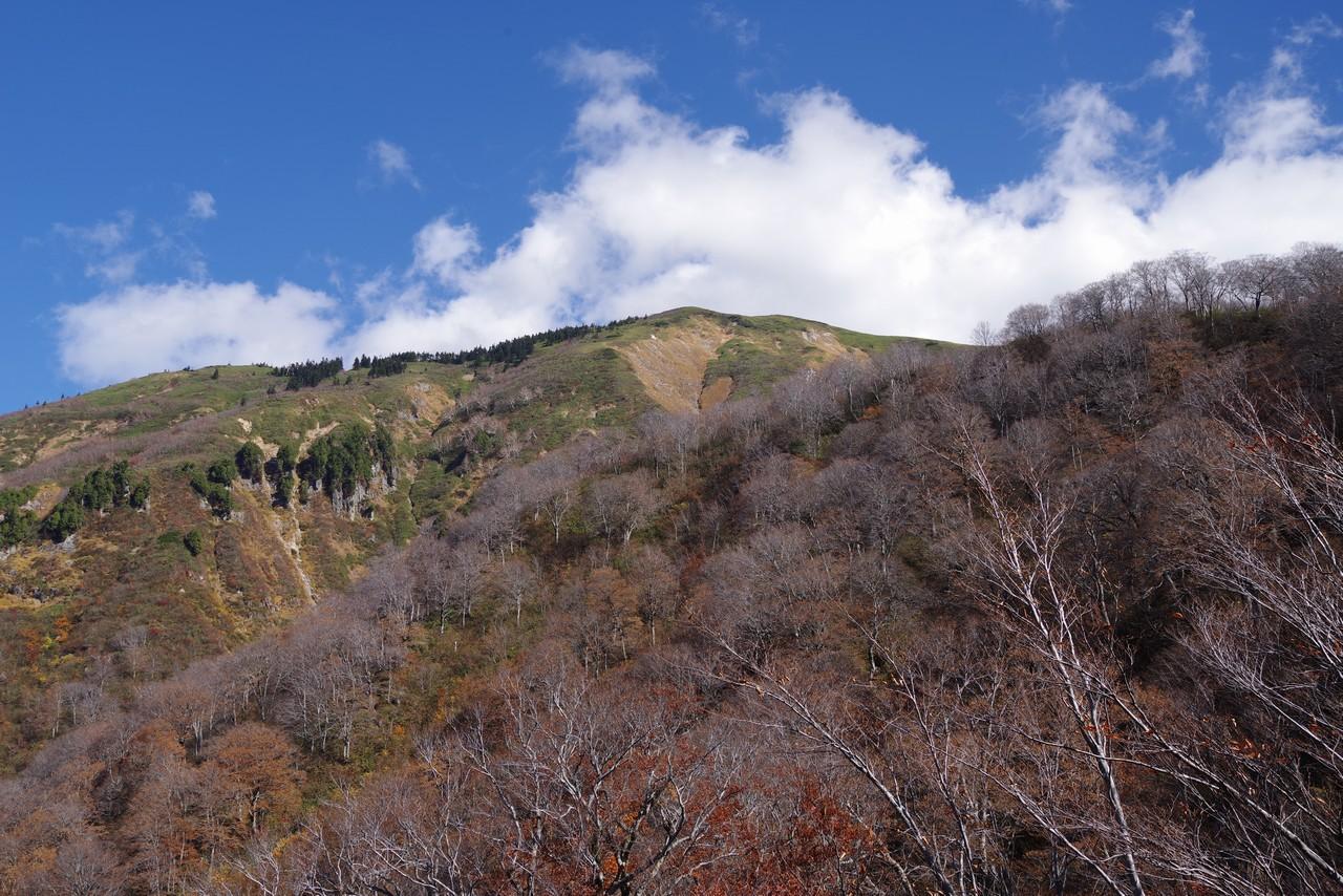 巻機山6合目から見たニセ巻機山
