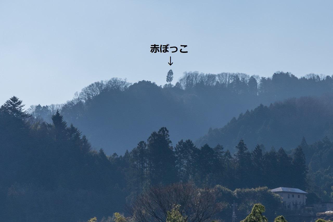 200113赤ぼっこ_020