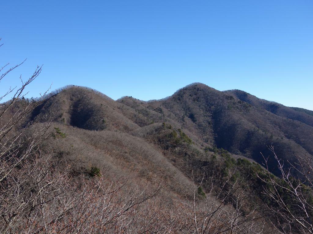 笹子雁ヶ腹摺山から見た米沢山とお坊山