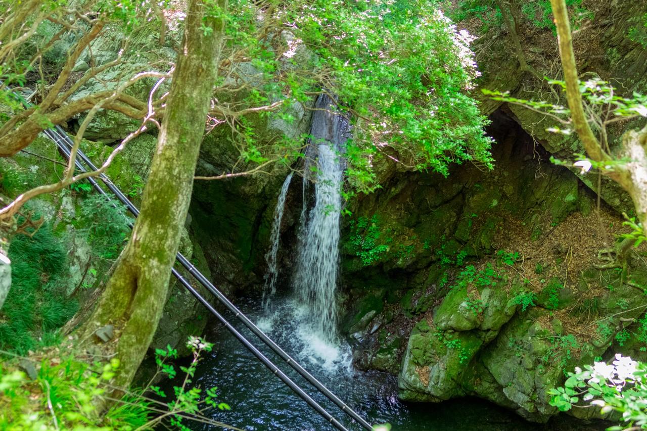 川苔山の名も無い滝