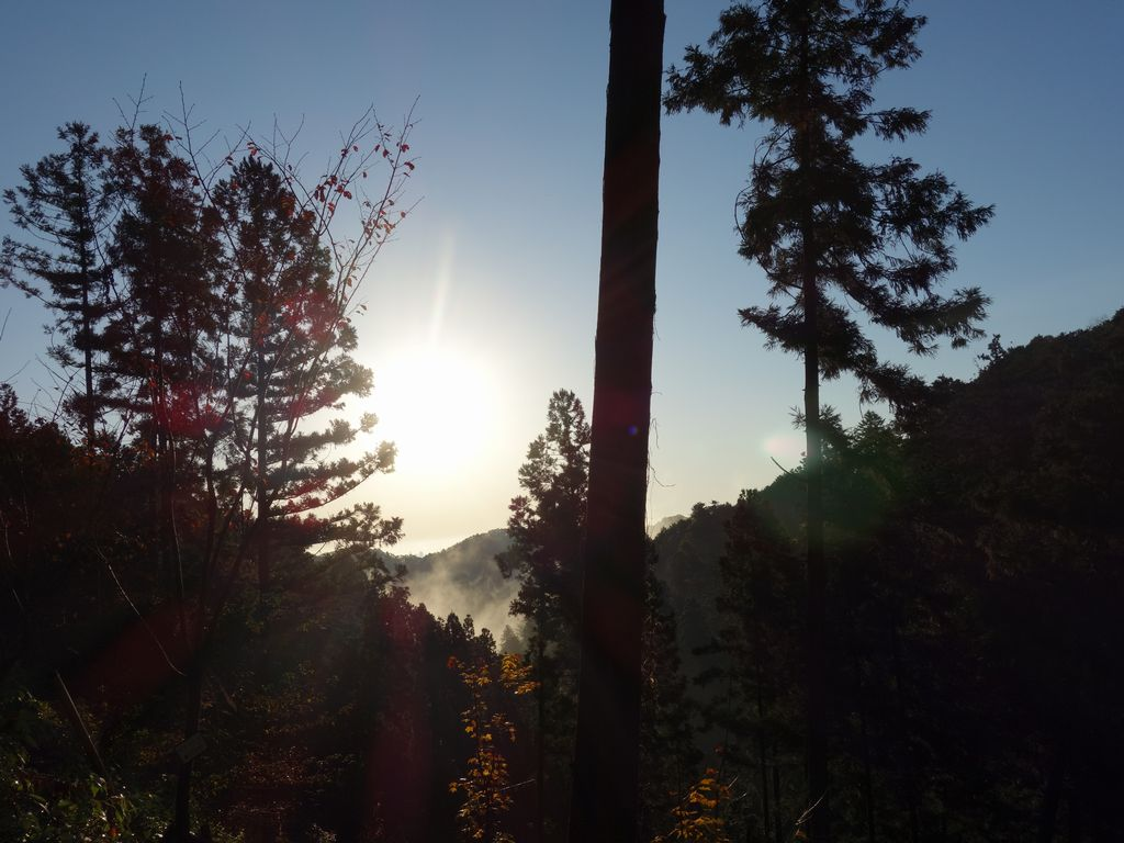 高尾山 一号路から見た朝日