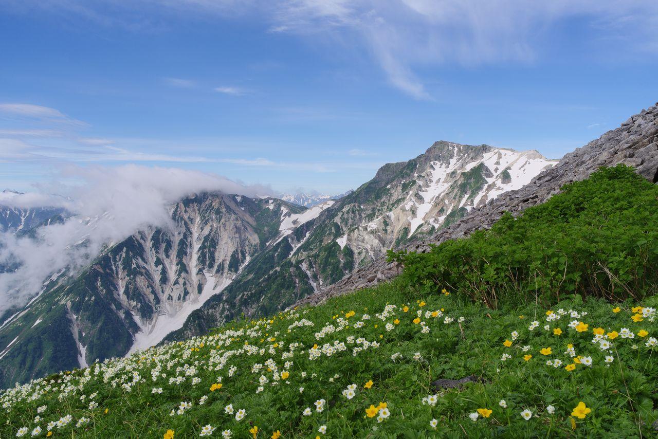 小蓮華岳付近から見た白馬岳