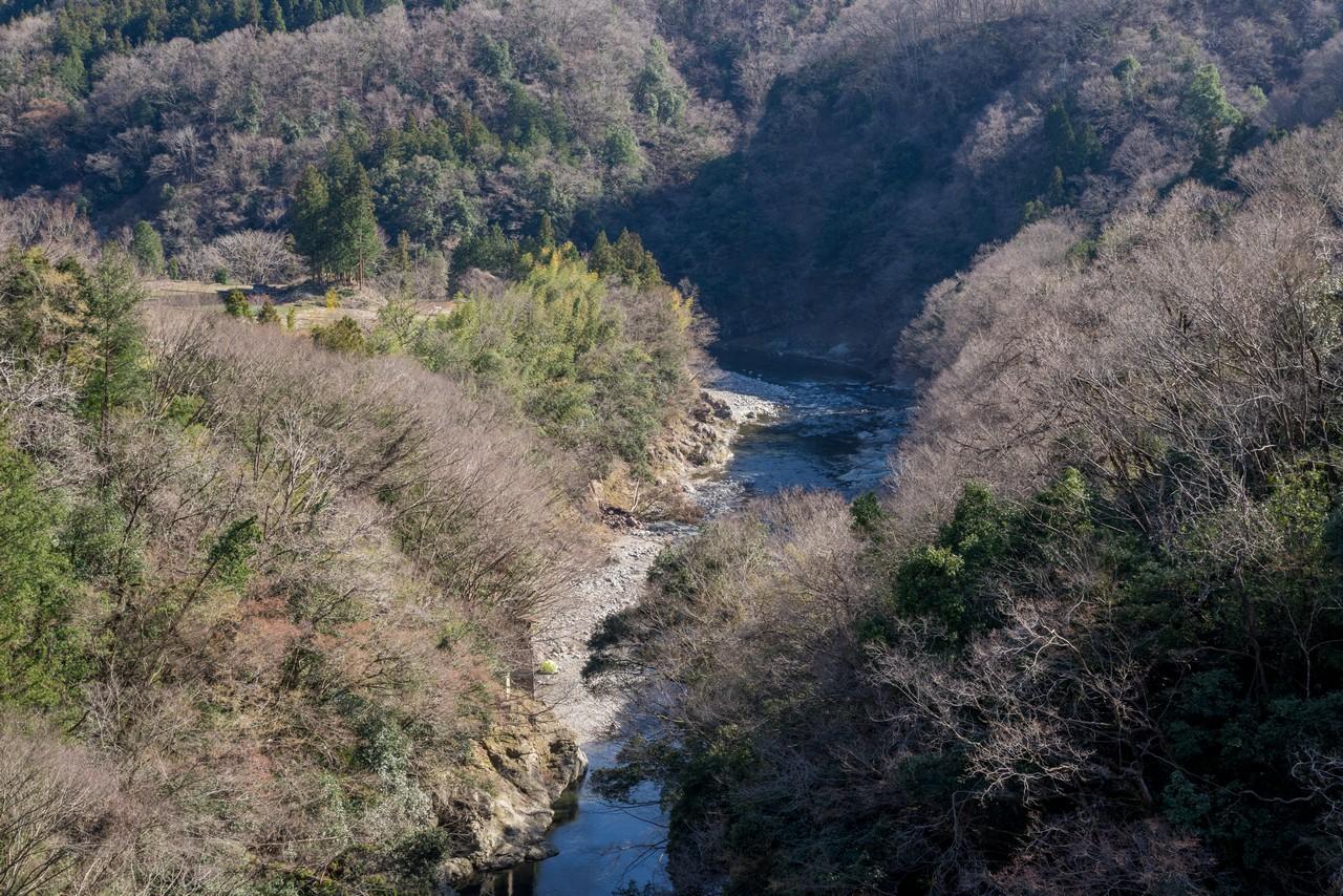190324倉岳山_088