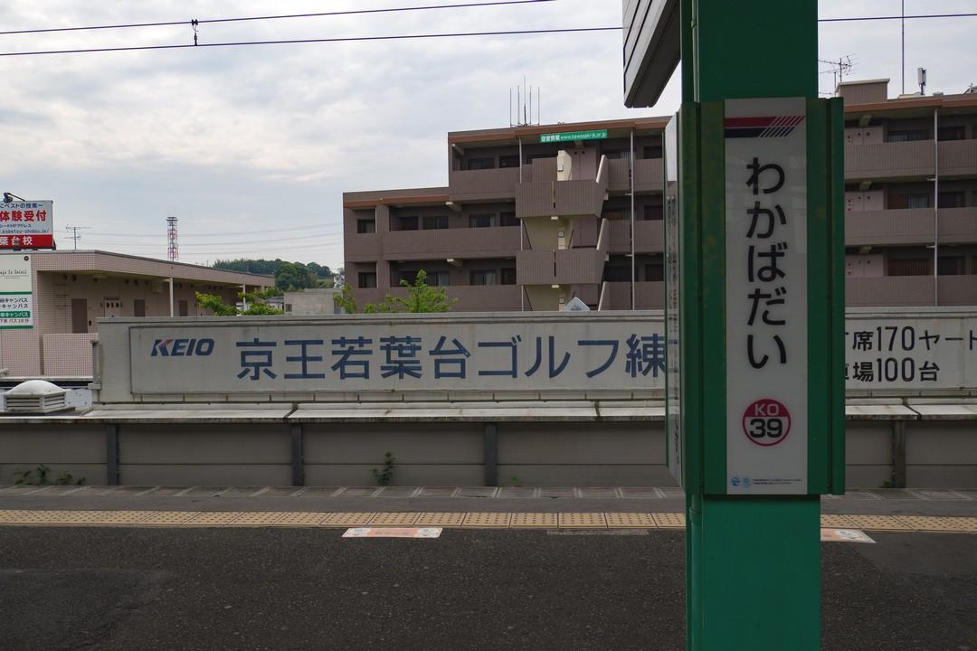180502よこやま道_007