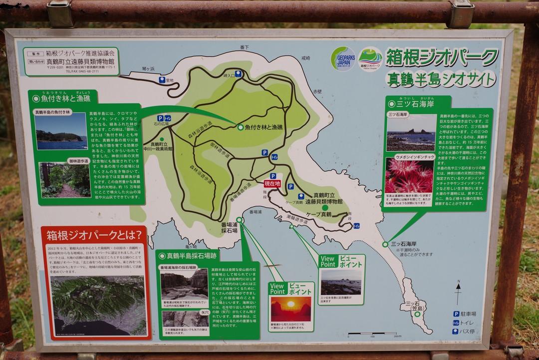 190223真鶴半島_029