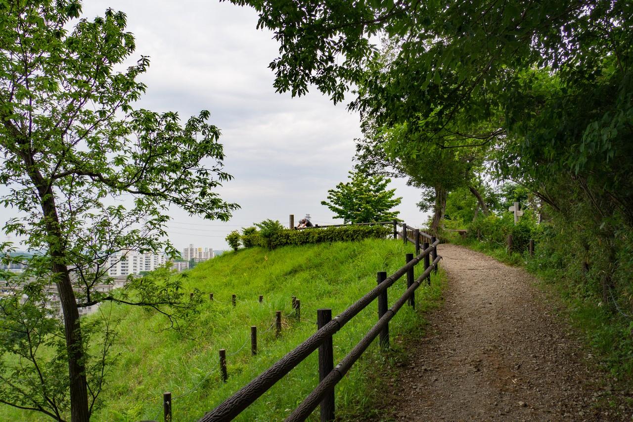 多摩よこやまの道の風景