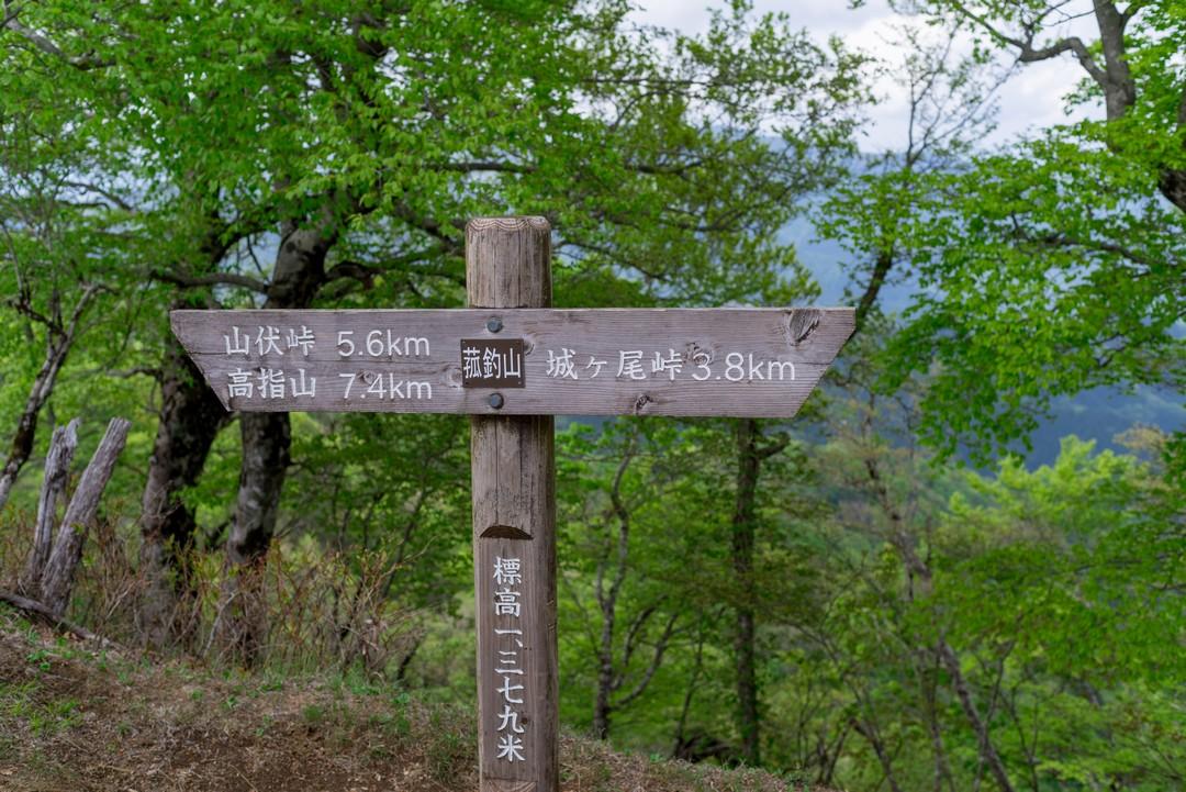 190518菰釣山_076