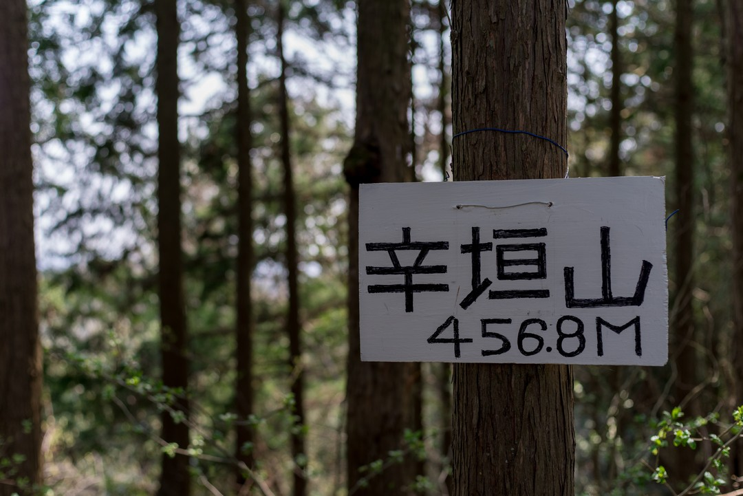 190407青梅丘陵_036