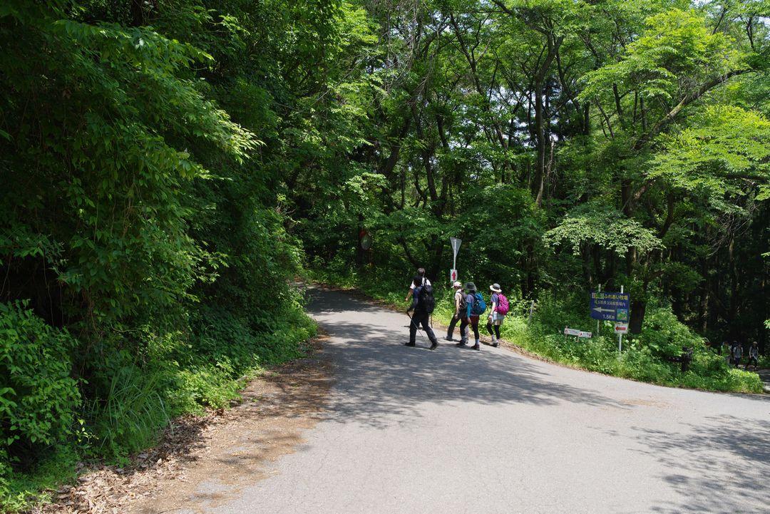 粥仁田峠付近の林道