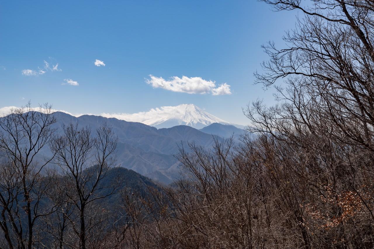 190324倉岳山_063