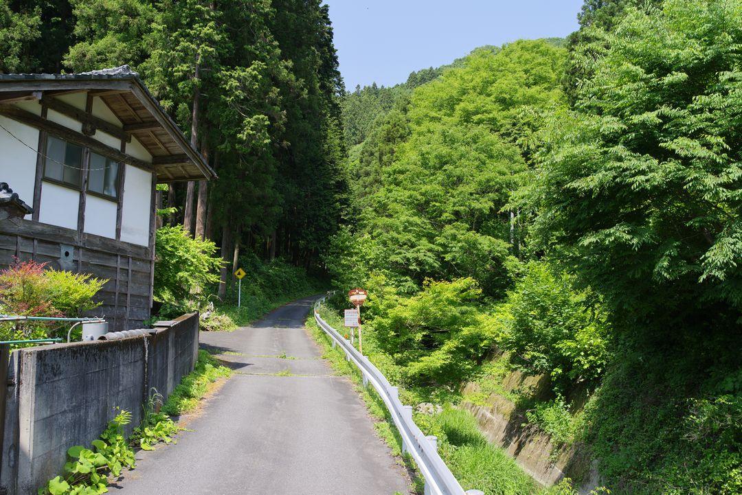 経塚バス停付近の林道