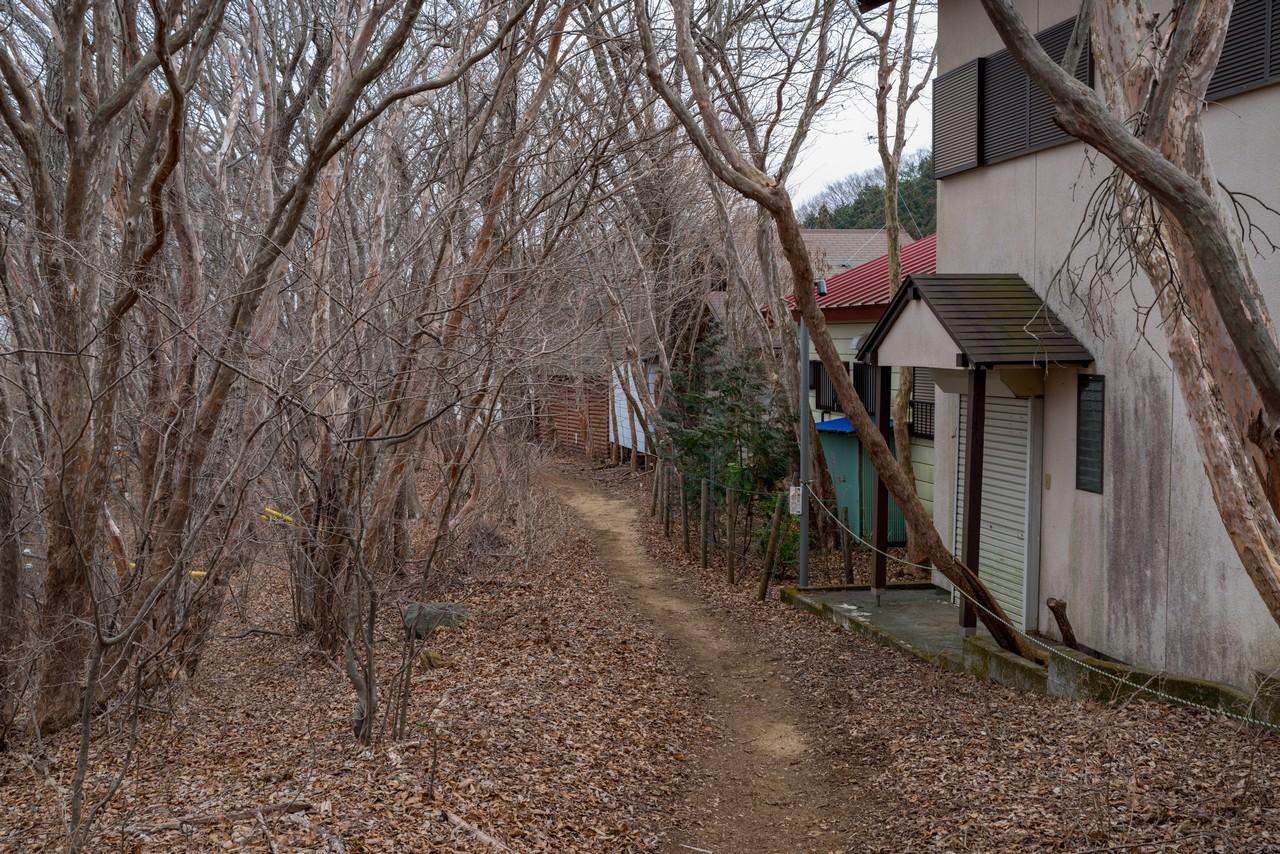 200215丸山_075