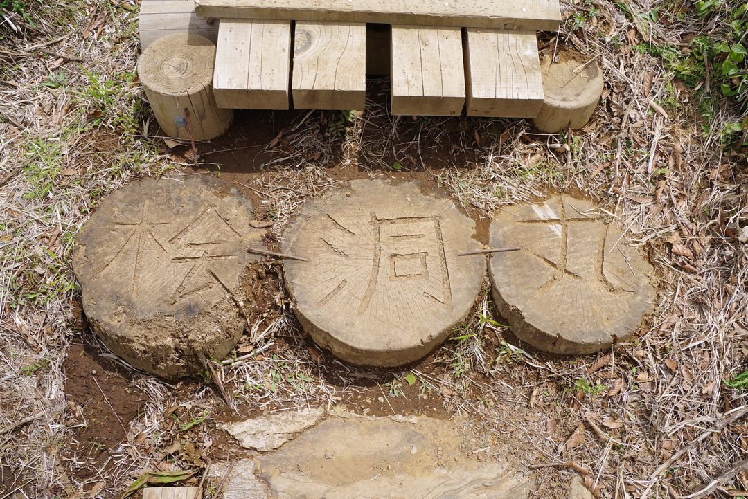 檜洞丸の名が掘り込まれている丸太
