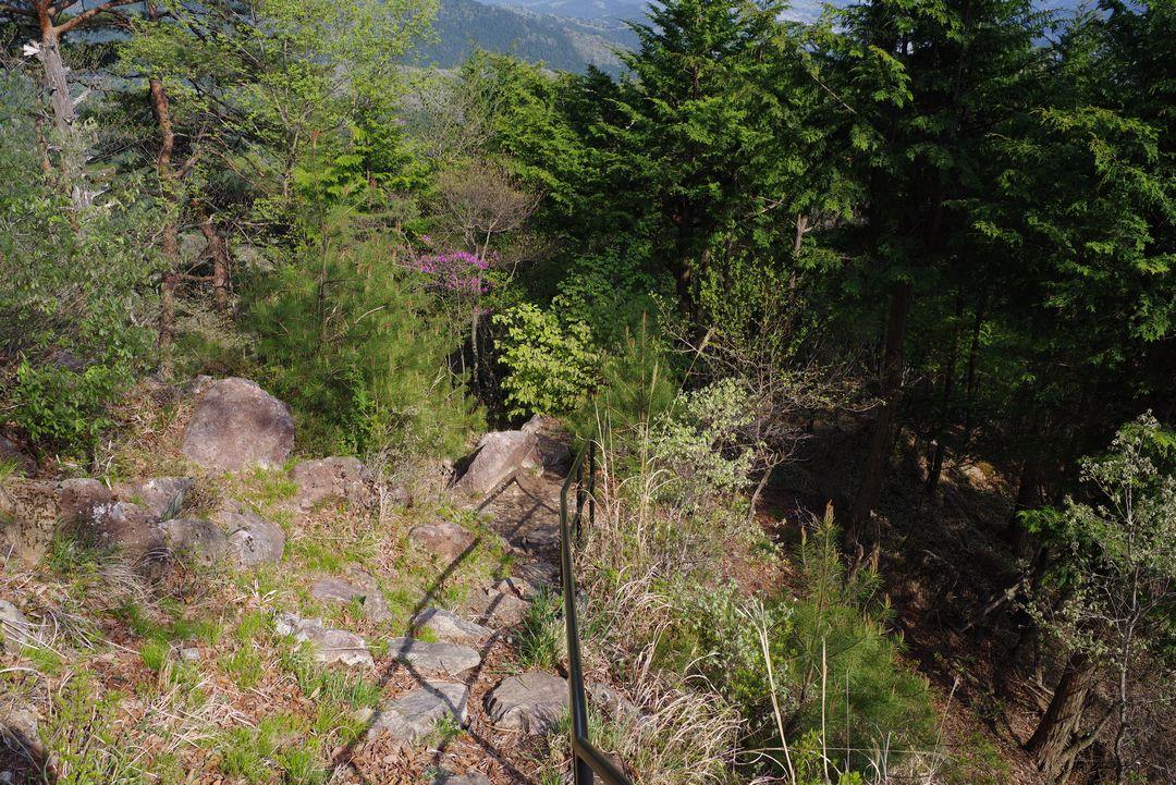 180421鳴虫山_096