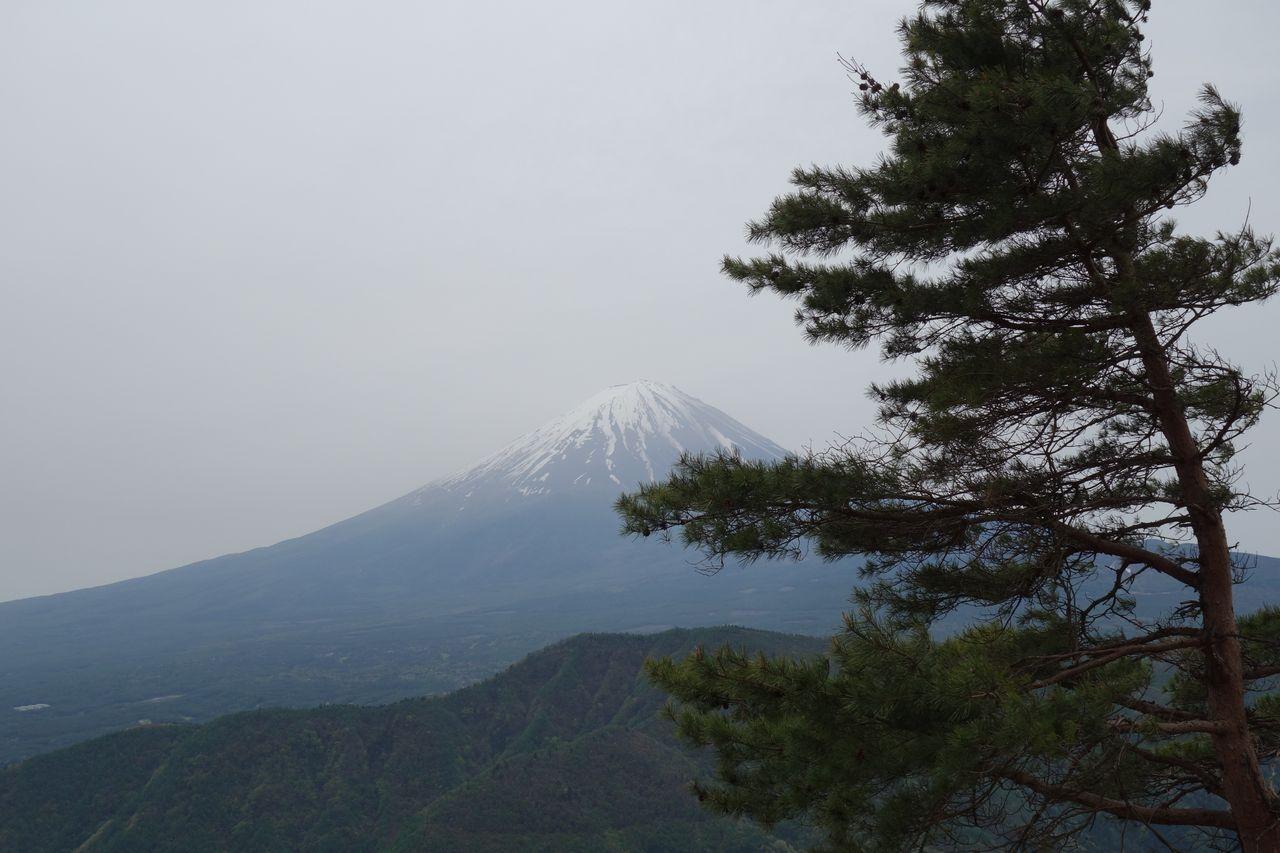 160503十二ヶ岳_010