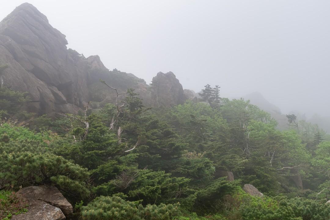 170702早池峰山_054