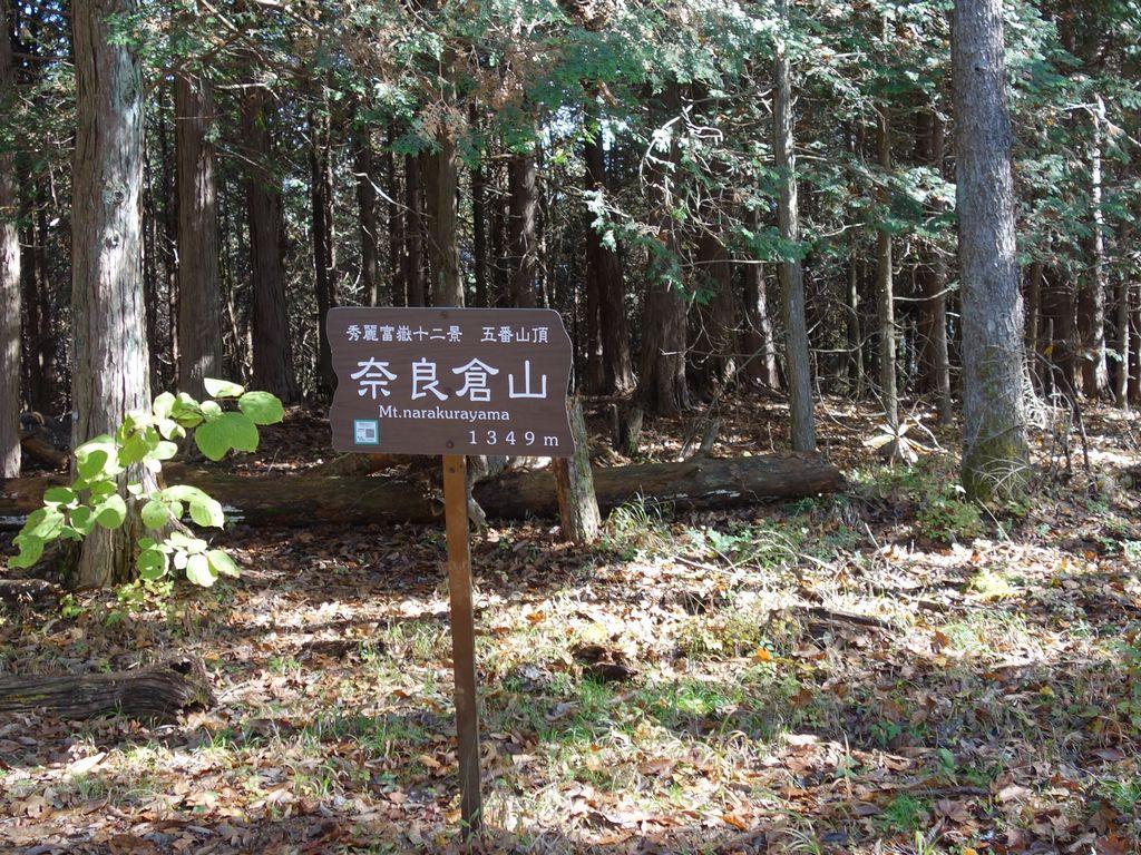 奈良倉山の山頂