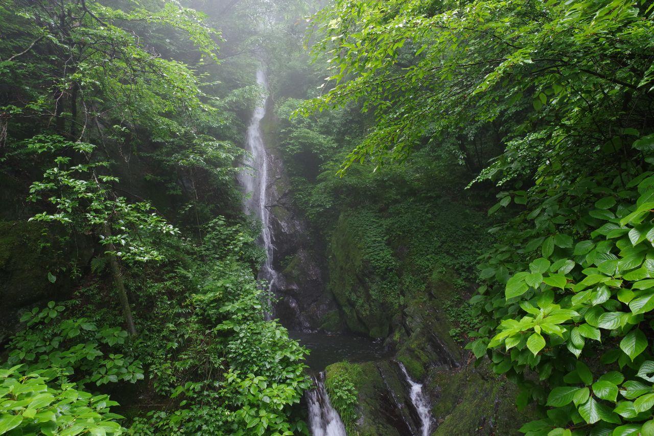 大岳山 鍾乳洞と滝の道の大滝