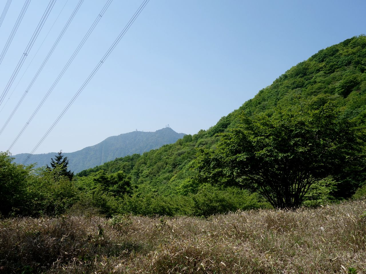 150711本社ヶ丸_014