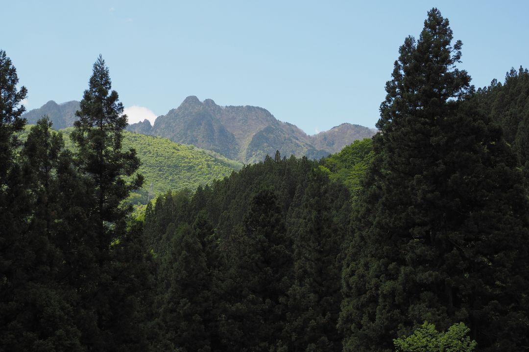 二子山登山口から見た両神山