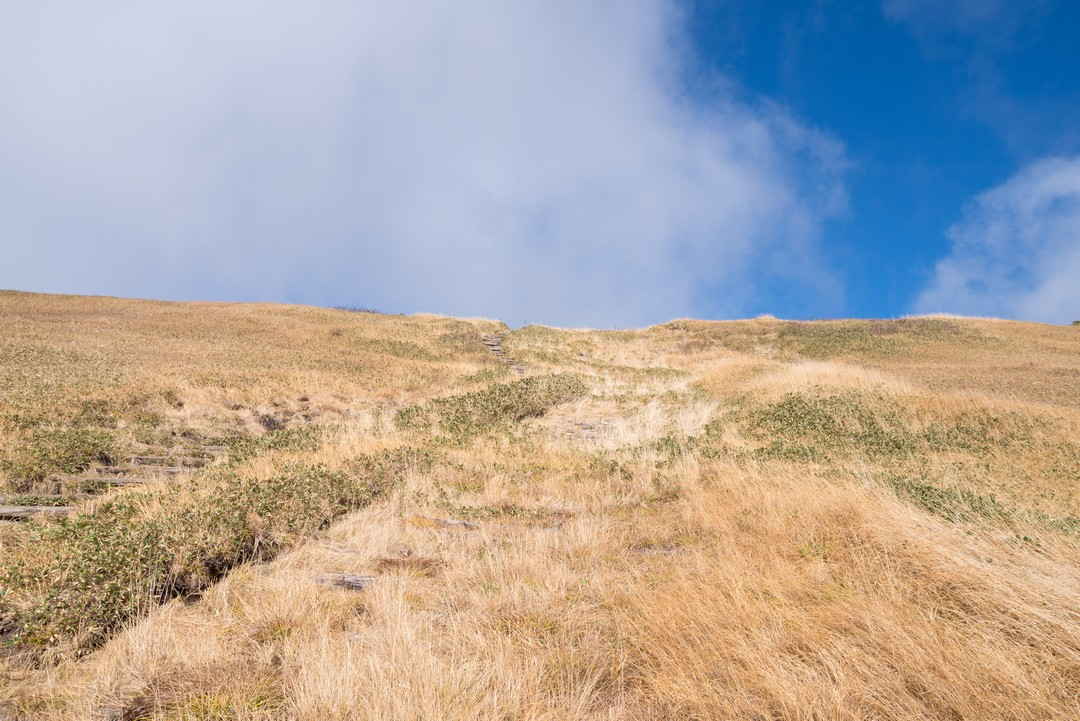 巻機山 山頂直下の急坂