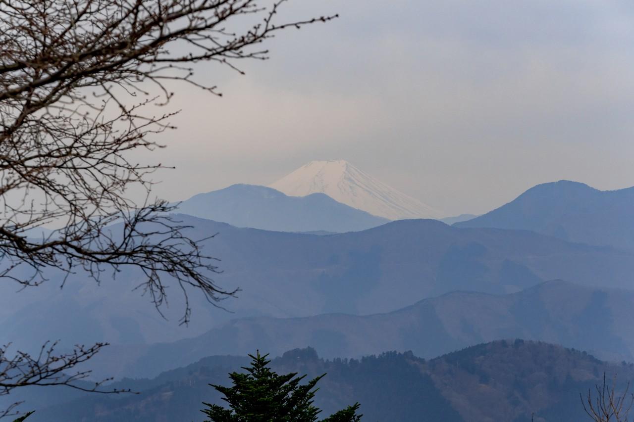 200215丸山_099